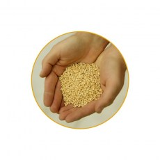AU1000 - Universal absorbent coarse granules